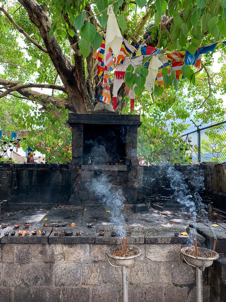 autel dambulla