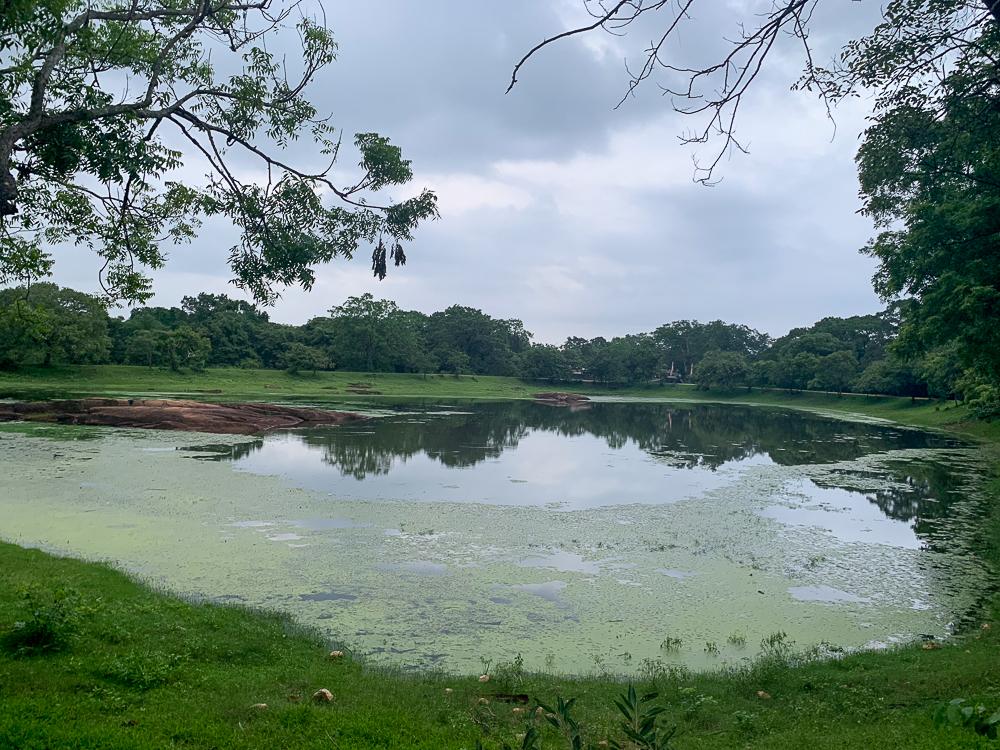 bassin polonnaruwa