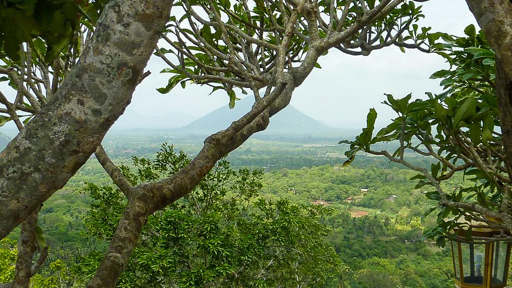 vue depuis dambulla arbres